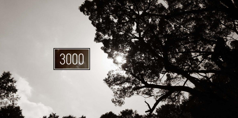 樹齢3000年の大迫力。佐賀県武雄市の武雄神社にある大楠を見てきた。